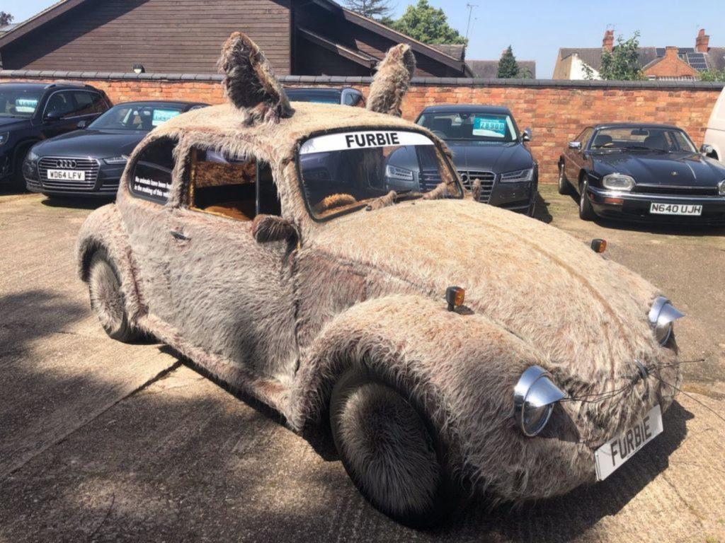 Volkswagen Garbus jako Furbie Car, czyli pies-samochód