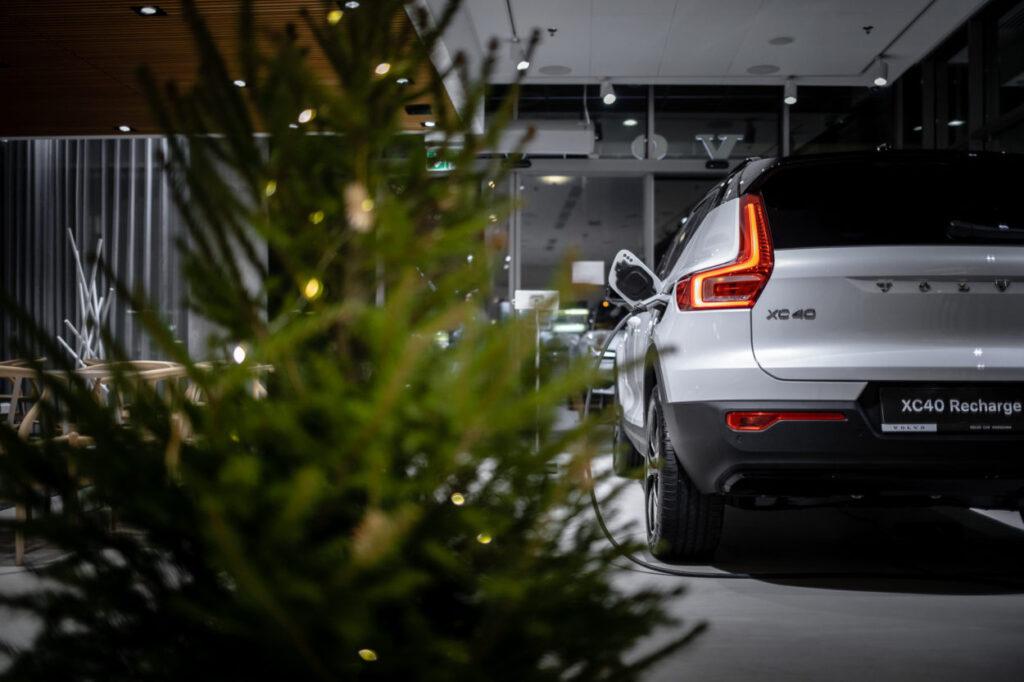 Wypożycz Choinkę na święta! – Wypożyczalnia Choinek Volvo rusza 17 grudnia